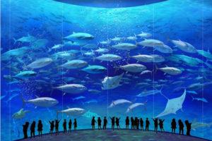 Kasai Rinkai Aquarium
