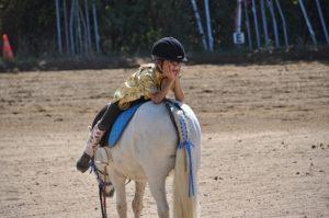 Horse | FAIR Study