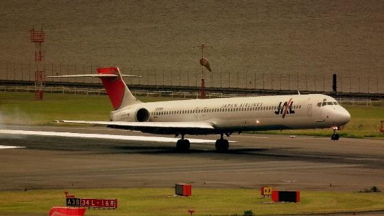 Study Visa in Japan (Airplane)   FAIR Study in Japan