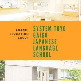 System Toyo Gaigo